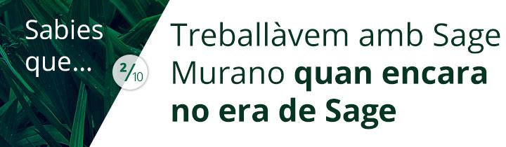 Sabies que murano1