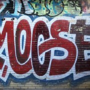 Moose virus
