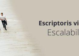 Escriptoris virtuals escalabilitat