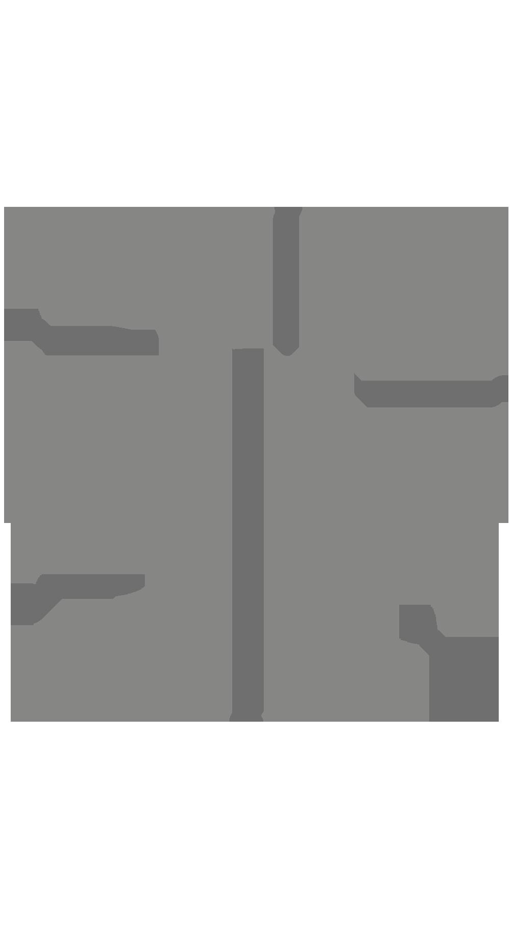 Cercle fi
